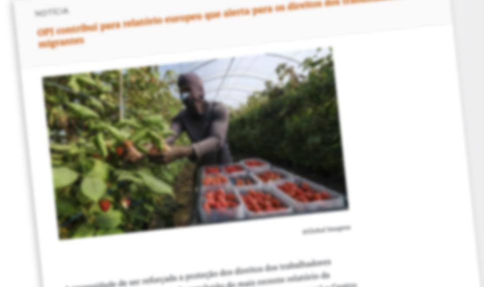 OPJ contribui para relatório europeu que alerta para os direitos dos trabalhadores migrantes